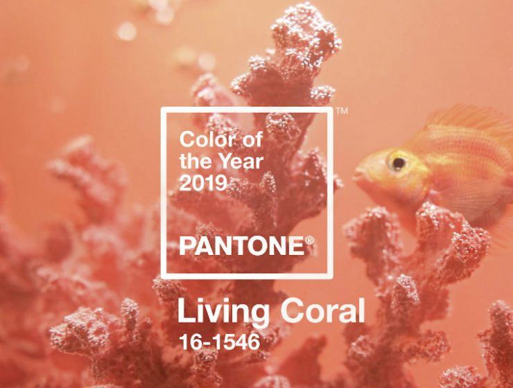 pantone-color-of-the-year-2019-is-living-coral  The Pantone Color of 2019: Living Coral pantone color of the year 2019 is living coral 740x560